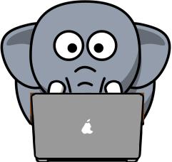 ordi eleph